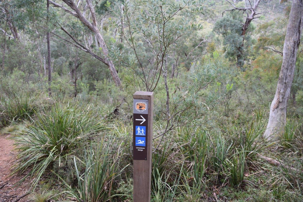 Turn right here to make your bushwalk a loop back