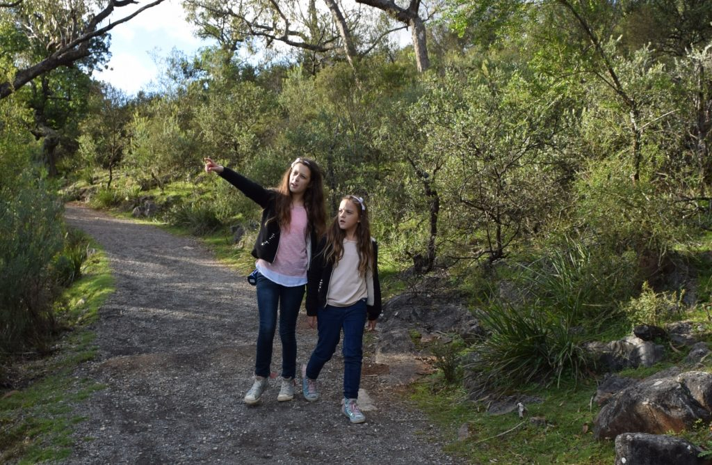 Bushwalking with the kids in Australia