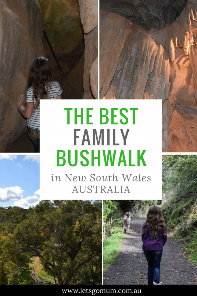 3 big reasons why your kids will love this NSW bushwalk! Australia