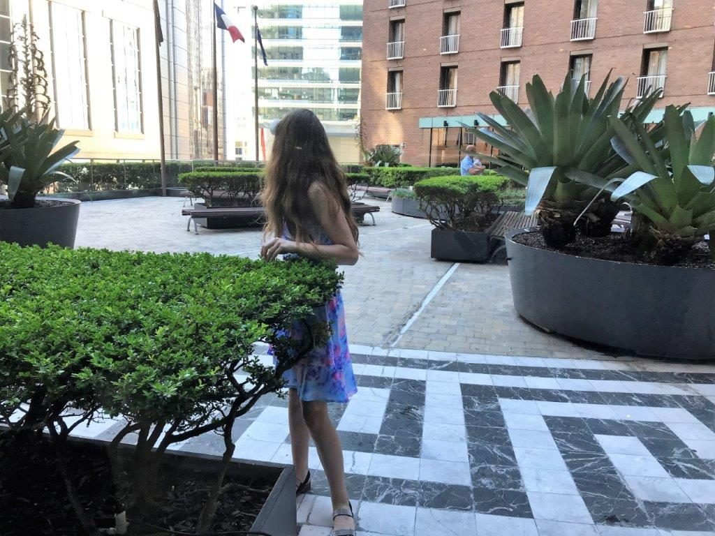 The Sydney Sofitel gardens are a great place to play, or simply stroll and sit!