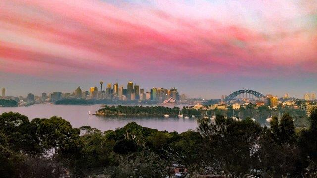 Our Roar and Snore Sydney Harbour sunrise was spectacular