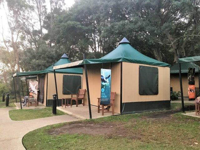 Taronga Zoo Sydney Roar and Snore guest tents