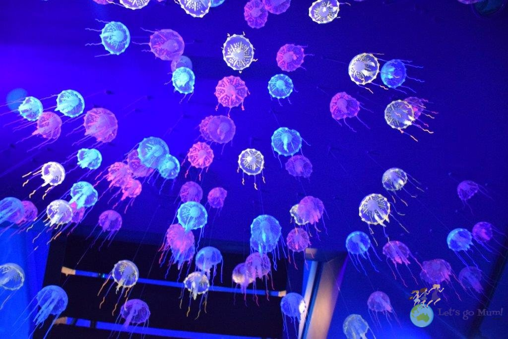 You'll find these ethereal little jelly fish hanging around the exhibit entrance...