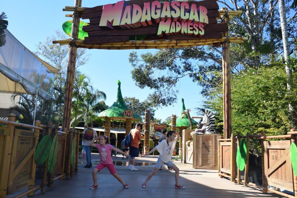 It's Madagascar Madness - go crazy!