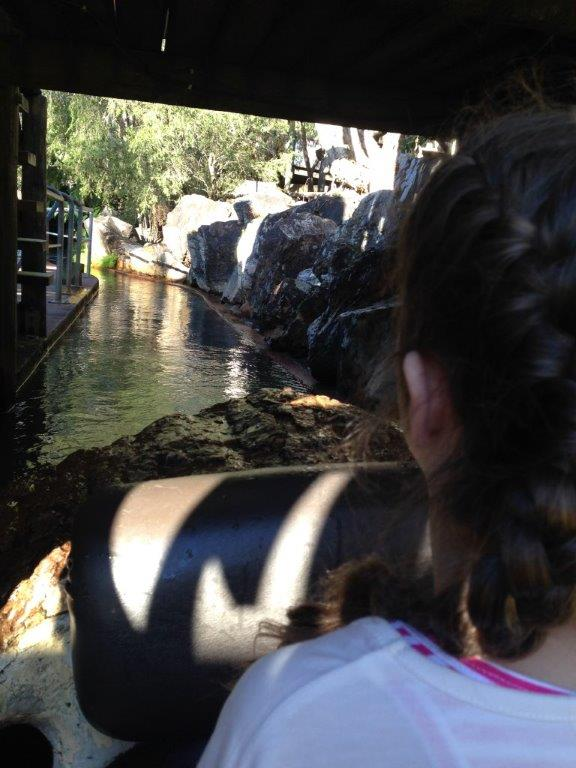 The Rocky Hollow Log ride - so gentle - until the end!