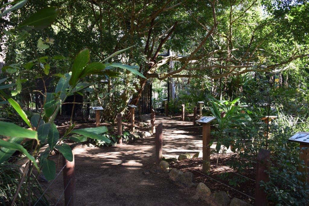 A beautiful walk-in aviary at Currumbin Wildlife Park