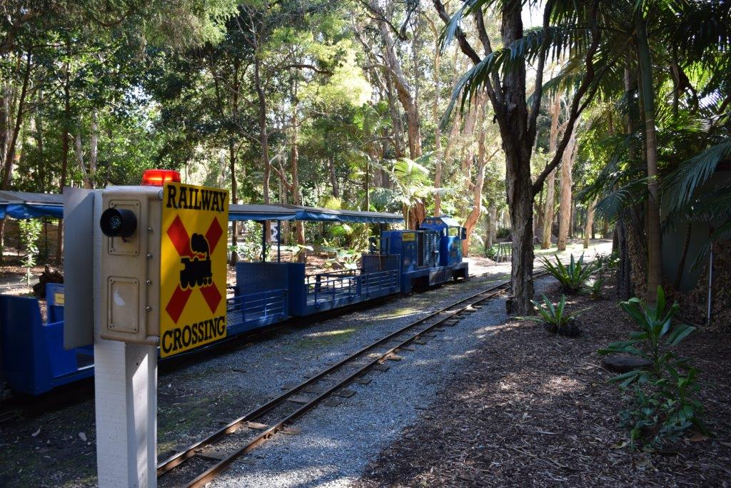 All aboard the Currumbin express! This little train is free, and runs the length of the park.
