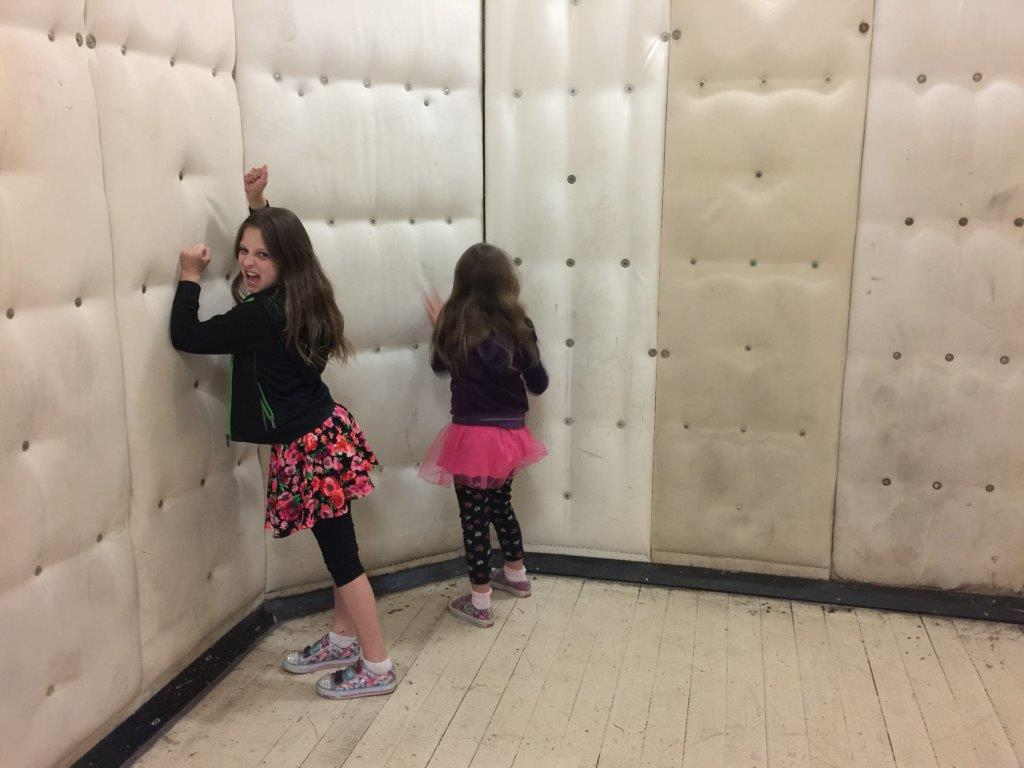 I always knew they were crazy - Brooke and Samantha go mad in a padded cell!