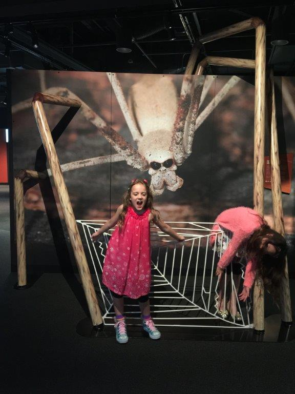 """Giant Daddy Long-Legs gives the """"Drama Queens"""" a hug!"""