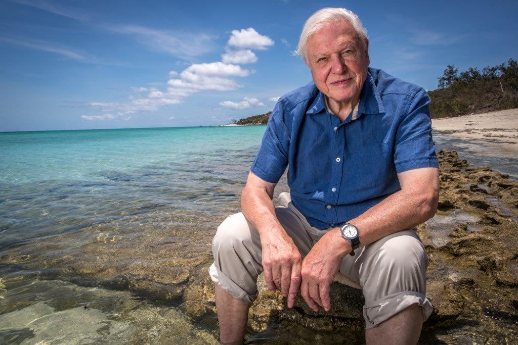 David Attenborough Barrier Reef DVD