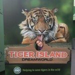 Dreamworld Tiger Island