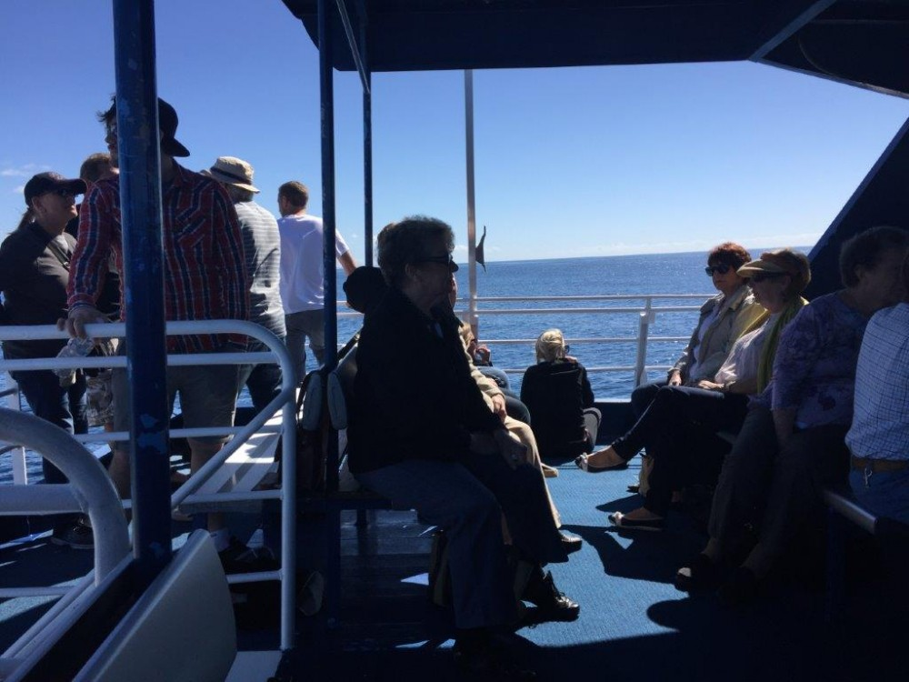 The top deck was a great vantage point for whale watching