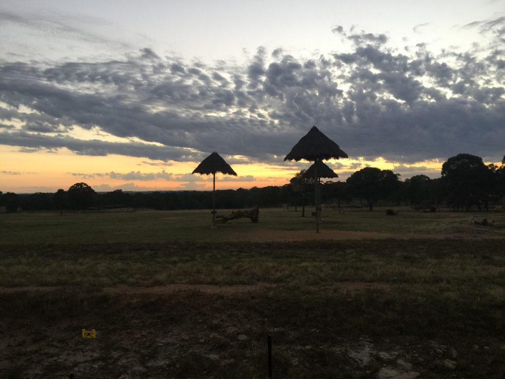 Sunset on the African Savanna