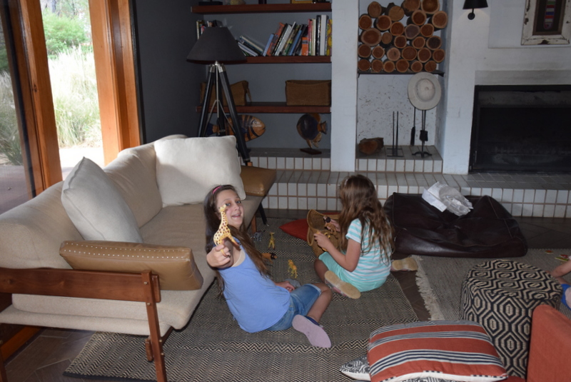 What do you play with in the Guest House? African animal toys of course!