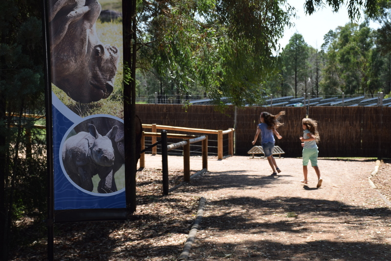 Exploring Taronga Western Plains Zoo