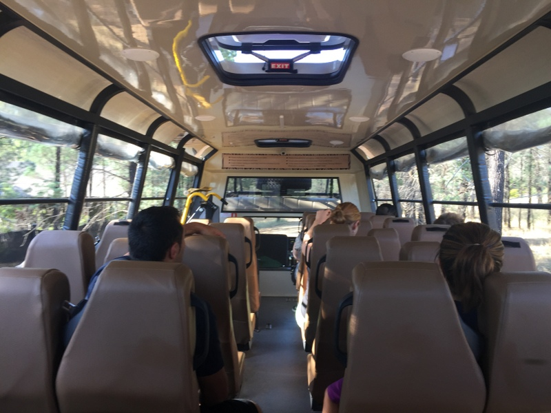 The Safari bus was ultra-modern and comfortable with open-sides for uninterrupted views