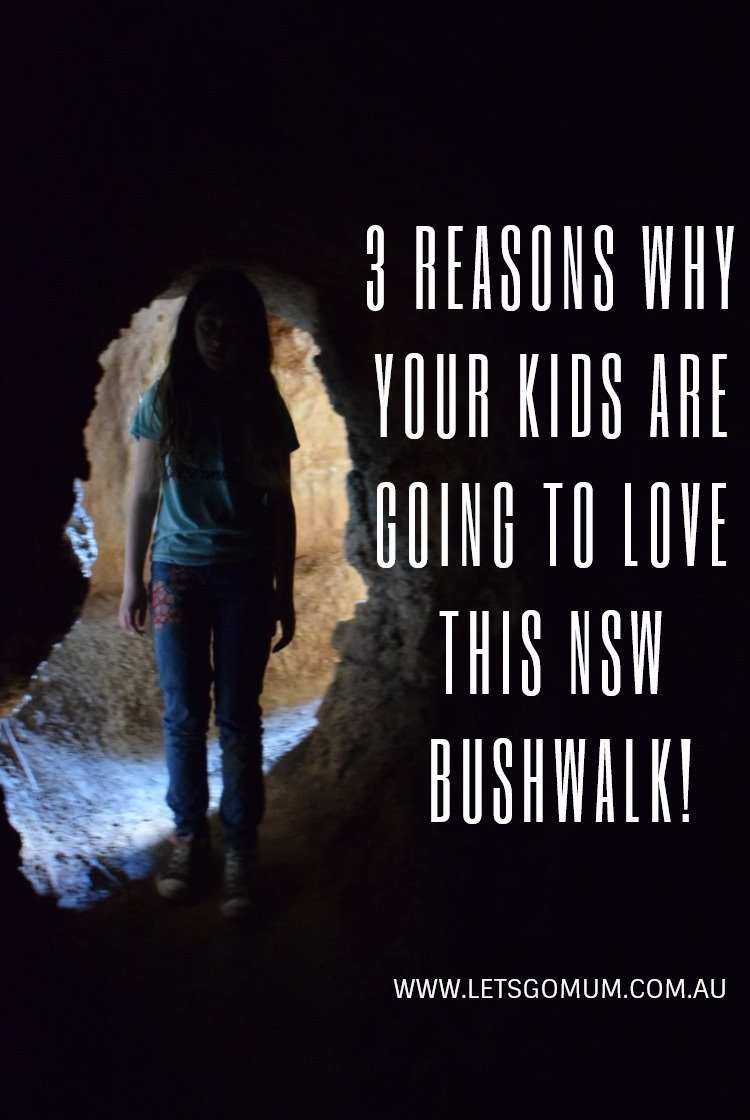 3 reasons why your kids are going to love this NSW bushwalk!