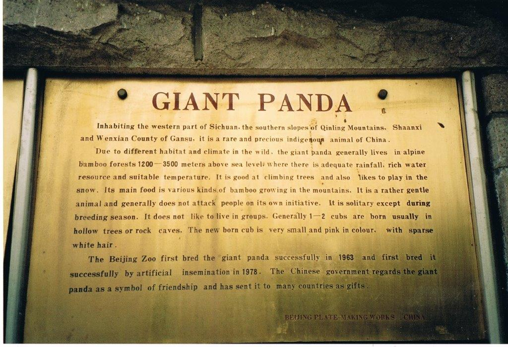 Giant pandas in Beijing Zoo official exhibit plaque