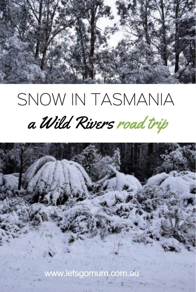 We went for a road trip around Tasmania - and got caught in a major blizzard whilst driving through the mountains of the World Heritage Franklin-Gordon Wild Rivers National Park - watch our video of our incredible drive here!
