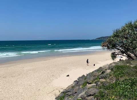 Byron Bay dog-friendly beach
