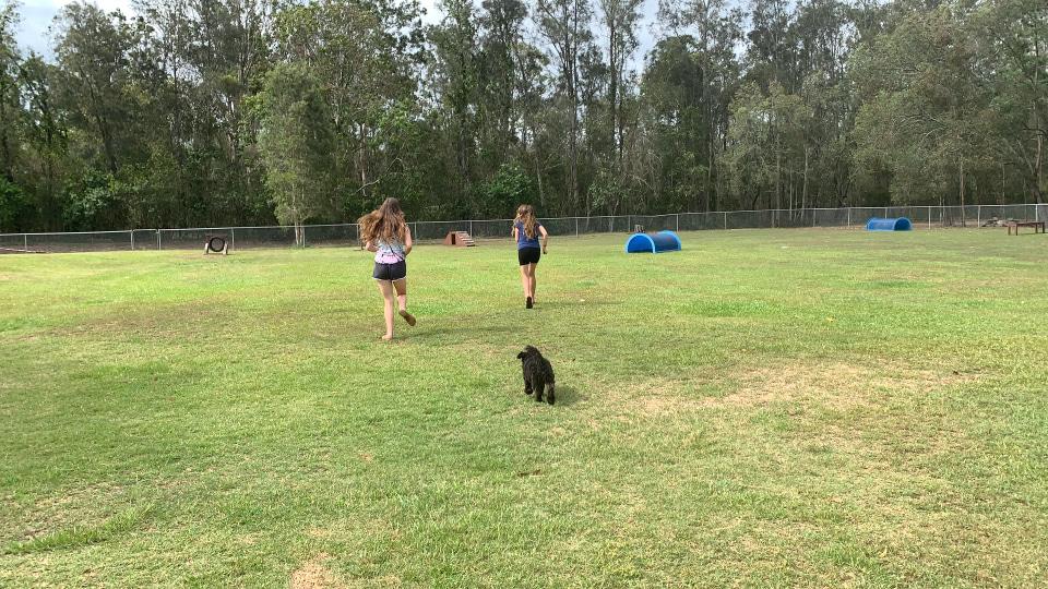 Off leash dog park at BIG4 Gold Coast