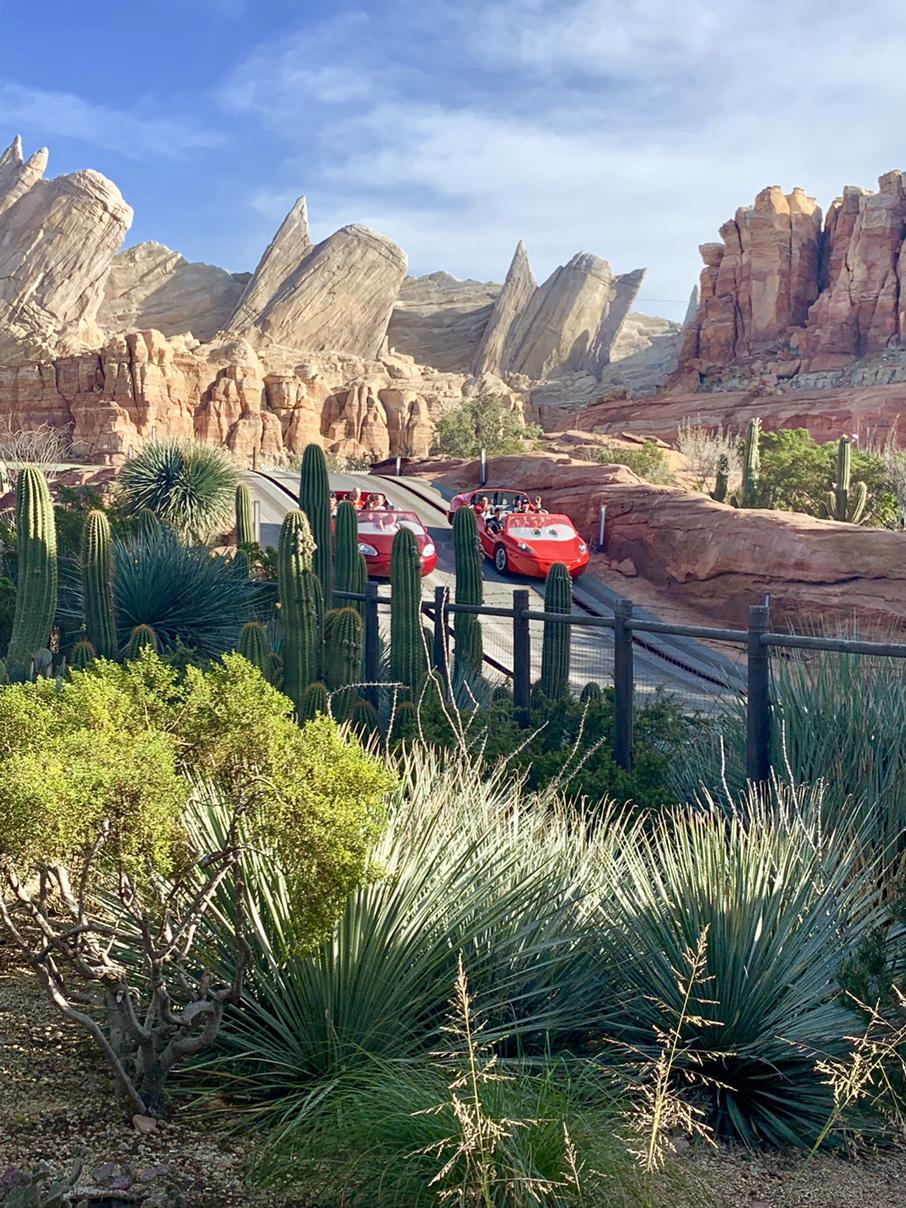 Disney Cars Land Radiator Springs Racers