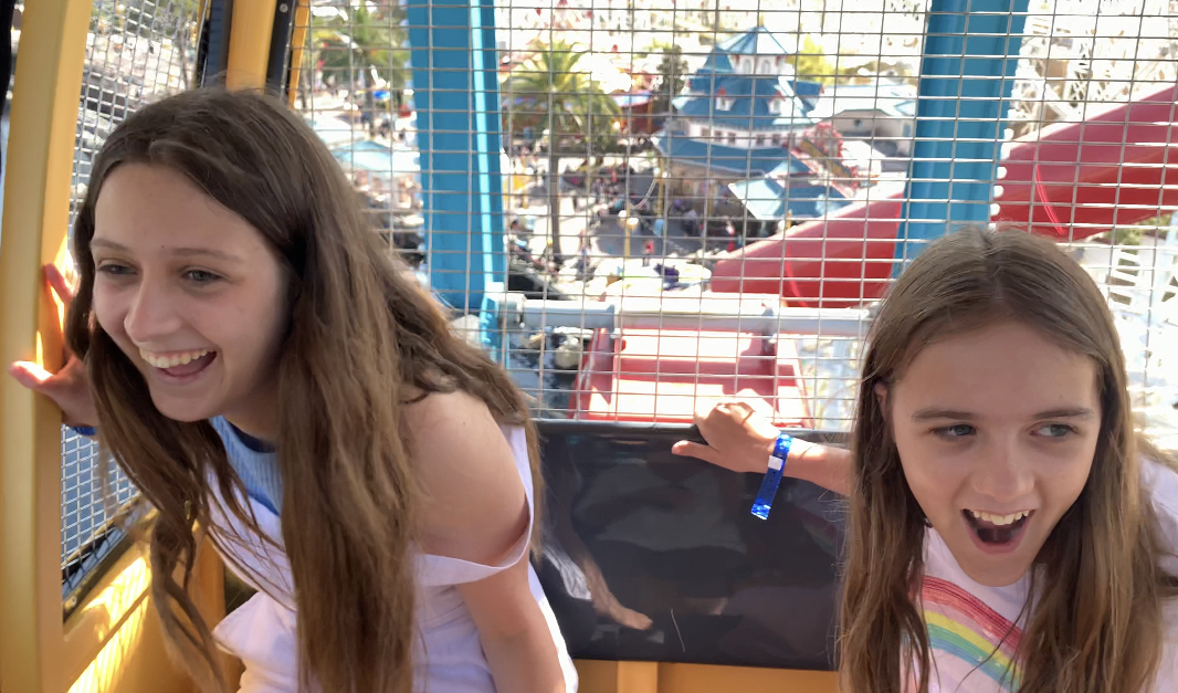 The Pixar Pal-A-Round Ferris Wheel is lots of fun!