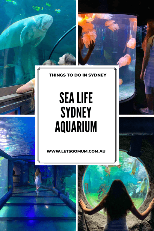 Located in the beautiful Darling Harbour precinct, close to the historic Rocks area and Sydney CBD, SEA LIFE Sydney Aquarium is one of Sydney's top family attractions.