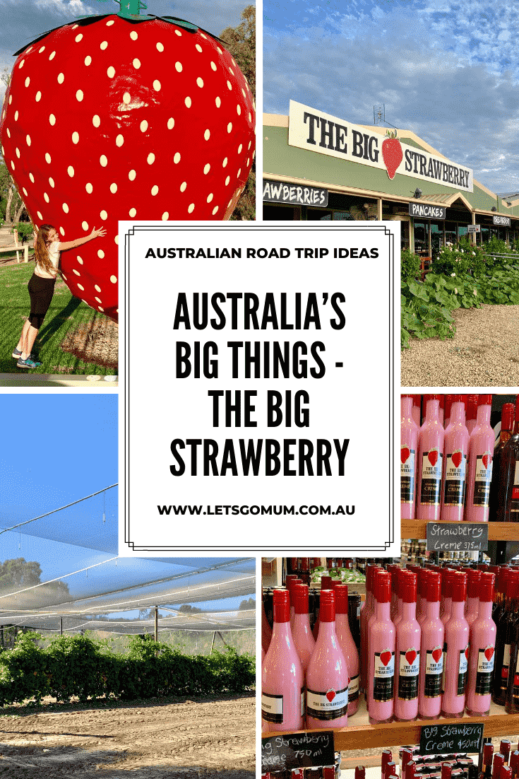 Australia's big things - The Big Strawberry, Victoria - Australia's Big Things are a must see on any road trip, so you certainly shouldn't miss the sweetest of them all