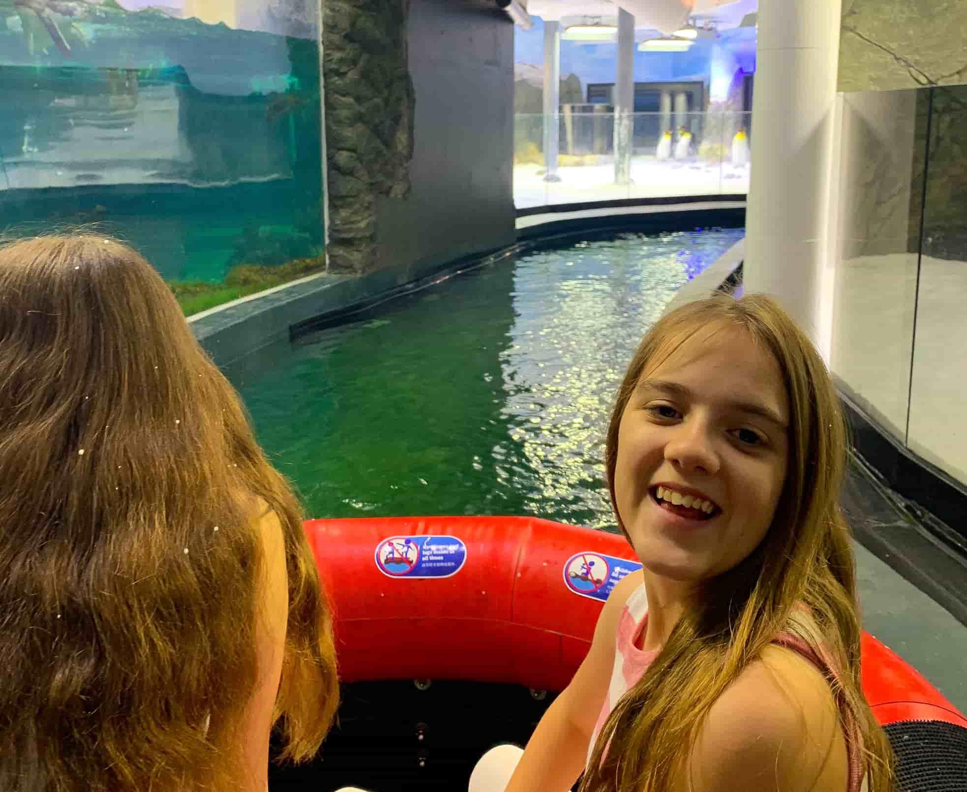 Sydney Aquarium Penguin boat ride
