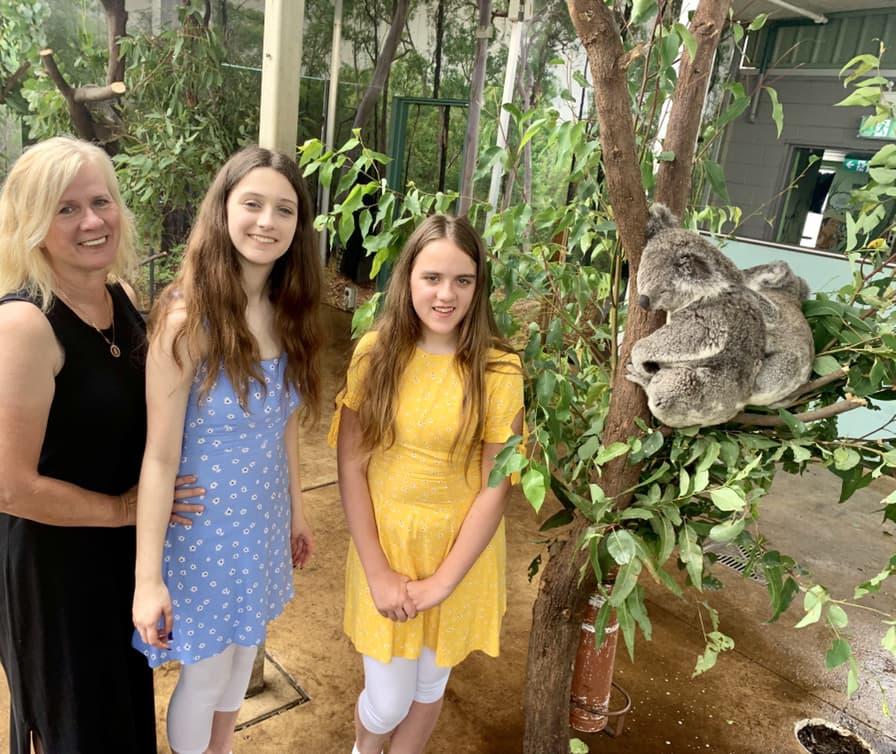 Get up Koala photo at WILD LIFE Sydney Zoo