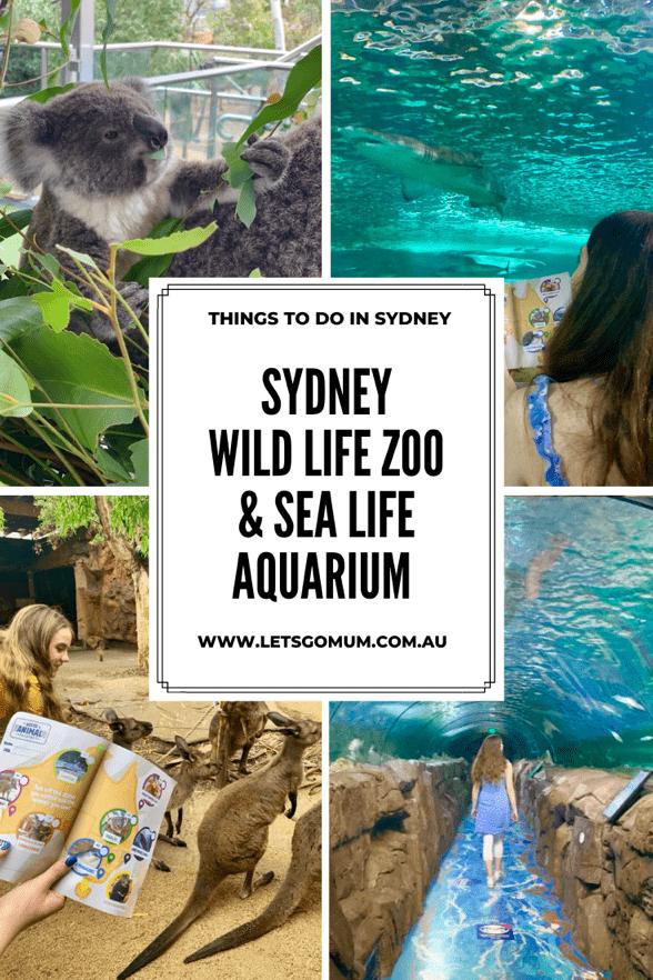 Things to do in Sydney, Australia- Sydney Zoo & Aquarium