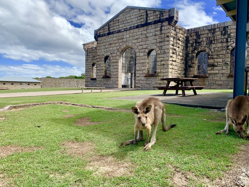 Historic Trial Bay Gaol is just down the road