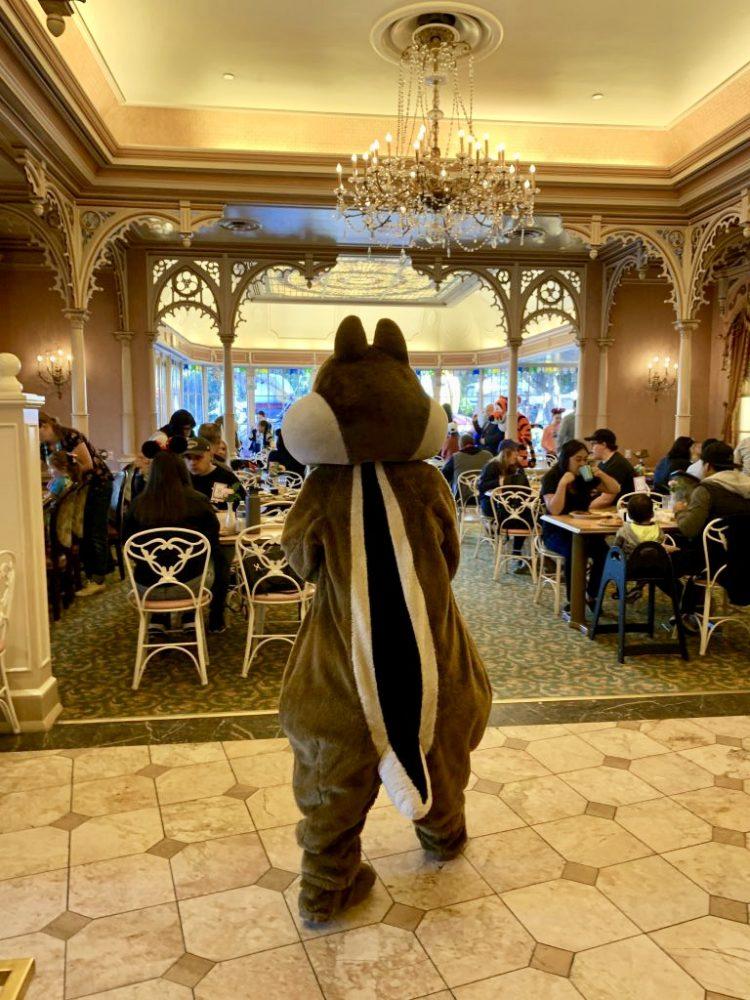 Chip at the Disneyland breakfast