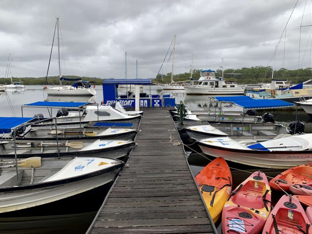 Take a drive to Dunbogan where you can feed fish by hand