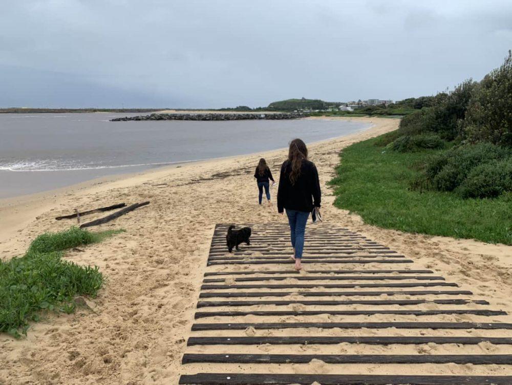 Stockton Beach dog friendly beach