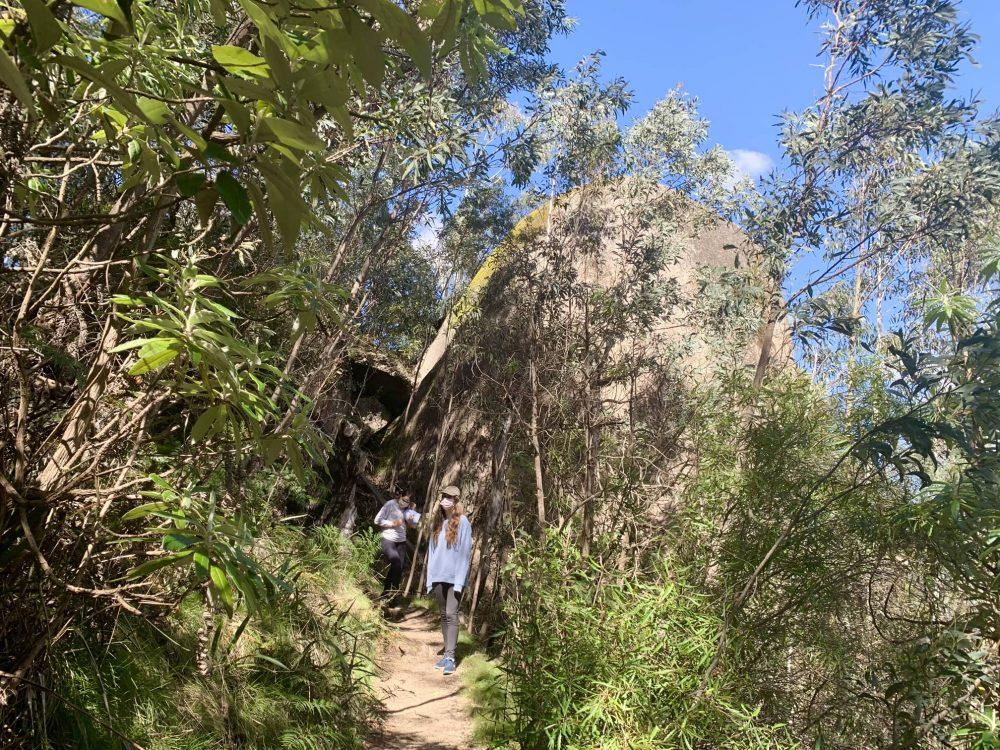 Tidbinbilla Nature Reserve Canberra - Cascades Trail bushwalk